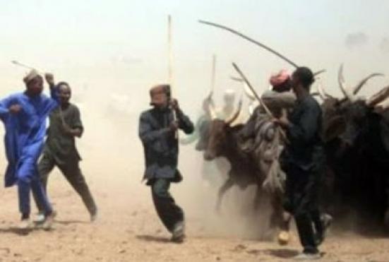 Gunmen Kill 20 Persons And 83 Cows(photos)