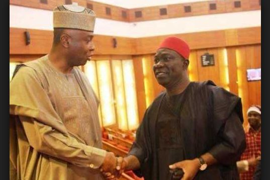 Saraki And Ekweremadu  Senate Elections are Null And Void – AGF